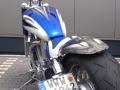 Blue Trude
